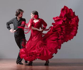 11_flamencovivo